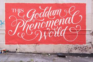 phenomenal world