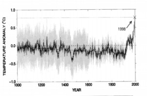 Hockey Stick from the original paper in 1999